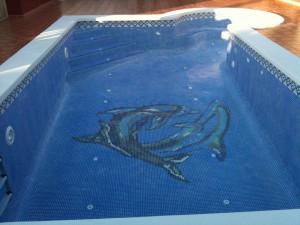 24-fondo-piscina-delfines